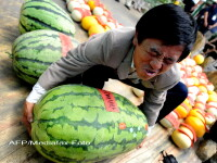 Siguranta alimentara, prioritate in China. Ce pedepse risca cei care incalca regulile