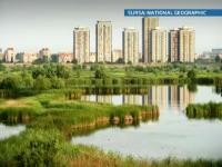 Delta din mijlocul Bucurestiului. Un adevarat ecosistem, intre blocuri prafuite si munti de gunoaie