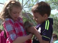 Gradinite alternative in Romania. Pe langa educatie, copiii au sansa de a cunoaste animalele si de a planta legume