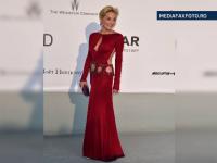 Record la Cannes pentru gala caritabila Amfar. Sharon Stone a strans 27,8 milioane de euro de la 900 de personalitati
