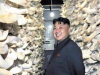 Un sud-coreean a fost condamnat la munca silnica pe viata in Coreea de Nord. A fost gasit vinovat de spionaj