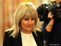 Udrea spune ca Ponta ar trebui sa plece dar ataca si varianta PNL: