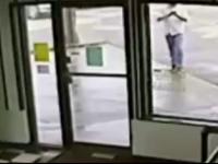 Momentul in care un american ocupat sa trimita mesaje calca pe un sarpe lung de 1 metru. Ce a urmat apoi: VIDEO