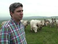 Decizia luata de tot mai multi fermieri din tara. Cheia succesului pentru