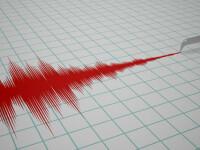 Seism cu magnitudinea de 3,1 in judetul Buzau, luni dimineata. Sase cutremure inregistrate in Romania de la inceputul anului