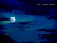 """Fenomen foarte rar. Prima eclipsă de """"lună albastră"""" după 150 de ani"""
