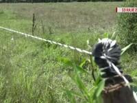 Barbatul care si-a montat un gard electric in jurul proprietatii, condamnat la 5 ani de inchisoare cu executare