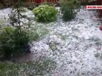 Ploaia cu gheata care a cazut in mai multe zone din Botosani a facut prapad si a distrus aproape total terenurile agricole