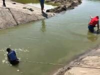 Un copil s-a înecat într-un lac de acumulare. Patru oameni s-au luptat să îl salveze