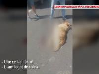 Explicaţia oferită pentru Ştirile ProTV de către bărbatul care şi-a legat câinele de maşină. FOTO