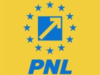 Ce prevede proiectul PNL de modificare a Constituției: fără penali în funcții publice