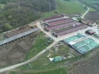 E.U. YES LA VOT. Afacerea unor elvețienii le-a adus prosperitate unor fermieri români