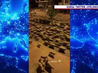 Străzile unui oraș din Turcia, pustii din cauza pandemiei, au fost, invadate de oi