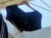 Descoperire uimitoare. Ce a găsit un elev în pantalonii săi, după ce i-a lăsat în balcon timp de 3 luni