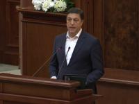 """Șerban Nicolae: """"Iohannis a ținut neapărat să ne arate că e și fudul, să confirme o vorbă"""""""
