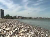 Cât vor scoate românii din buzunar vara aceasta pentru un sejur pe litoral, în Bulgaria și Grecia