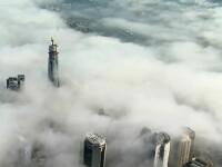 Imagini de poveste surprinse în Sydney, după ce o ceață deasă a învăluit întregul oraș