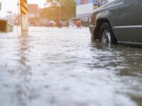 Cod galben de inundaţii în patru județe. Torenți și viituri rapide pe mai multe râuri