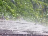 """Pagube uriașe din cauza grindinii și a ploii torențiale. """"Nu am putut salva mare lucru"""""""