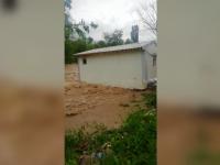 Mai multe familii din Alba şi Bihor au fost evacuate din calea inundațiilor