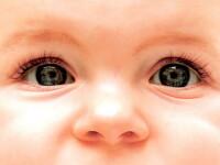 Si-au lasat bebelusul sa moara de foame! Ingrijeau un copil virtual