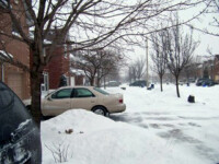 Iarna a pus stapanire din nou pe America!