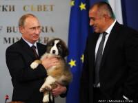 Putin a primit un pui de ciobanesc de la premierul bulgar