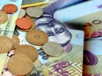 Salariu mediu de 3.500 de lei/luna. Domeniul cel mai bine platit din Romania, potrivit INS