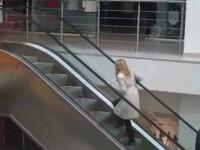 Cum urca o blonda scarile. Video la care au ras 500.000 de oameni