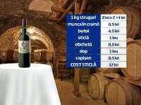 Patria vinului, partea 2: Drumul vinului din vie pana la raft. Cum identifici o bautura de calitate