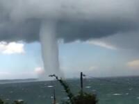 VIDEO. Imagini de cosmar filmate in Australia. Un urias vartej de apa se indrepta spre tarm