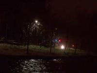 Descoperire macabra in parcul IOR din Bucuresti. Ce a gasit un barbat langa un copac