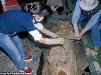 """O mumie dintr-o catacomba siciliana ar """"clipi"""" la peste o suta de ani dupa moarte. Care este explicatia oamenilor de stiinta"""