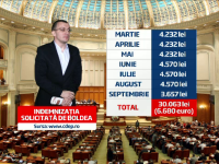 Mihai Boldea s-a intors in Parlament dupa 2 ani de inchisoare pentru a cere 30.000 de lei