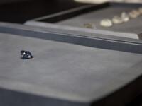 Un miliardar din Hong Kong i-a cumparat fiicei sale de 7 ani cel mai scump diamant din lume. Suma record pe care a platit-o