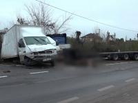 Două autocamioane și un tir s-au ciocnit. Șase vaci au murit