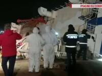 Șeful ANSVSA, demis de Orban după moartea celor 14.000 de oi din portul Midia