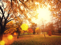 Vremea azi, 4 noiembrie. Înnorări și ploi slabe în sud-vest, vreme frumoasă în celelalte regiuni
