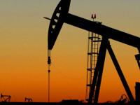 Tensiunile din Egipt au dus la cresterea pretului petrolului Brent