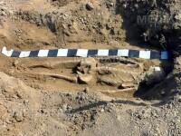 Misterul sutelor de schelete dintr-o groapa comuna din Ungaria