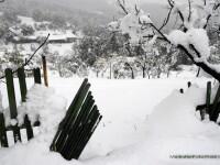 Viscol si ninsoare abundenta! Troienele au ajuns mai inalte ca o masina!