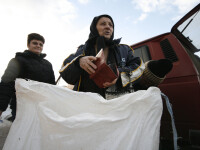 Targ de criza, de Sfantul Dumitru, la Fieni, in judetul Dambovita
