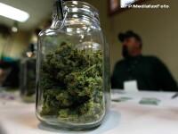 Doi tineri au fost prinsi cu marijuana si hasis in centrul Bucurestiului