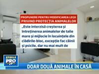 Legea propusa de un deputat PSD: nu mai mult de 2 animale in casa. ONG-urile: Incurajeaza abandonul