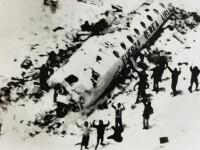 Marturia supravietuitorului unui accident aviatic. \