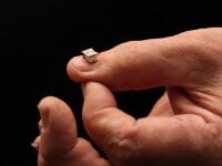 Biblia pe diapozitiv, vizibila la microscop, expusa la Satu Mare alaturi de alte 150 de biblii