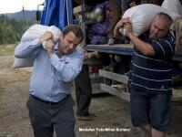 Alegeri parlamentare in Suceava. Cine se lupta pentru locurile de senatori si deputati din judet