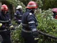 Copacii, panourile si acoperisurile, smulse de furtuna in Capitala. Trei persoane au fost ranite