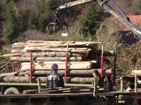lemne, camion