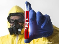 Un nou pas in vindecarea bolnavilor infectati cu Ebola. Oamenii de stiinta au descoperit regiunile vulnerabile ale virusului